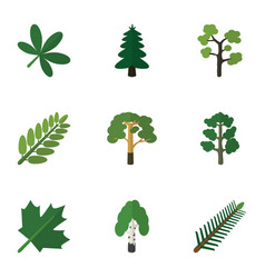 Flat icon ecology set of leaves timber forest vector