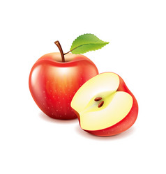 Red apple and slice isolated on white vector image