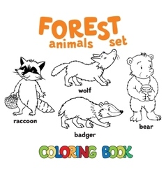Forest animals coloring book vector