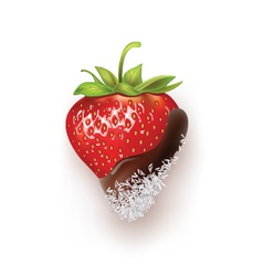 strawberry chocolate and coconut vector image vector image