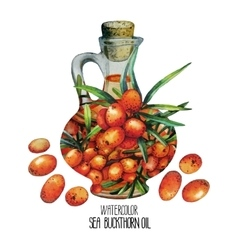 Watercolor sea buckthorn oil jar and berries vector