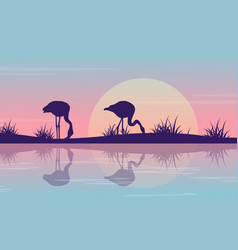 Silhouette of flamingo on riverbank at sunrise vector