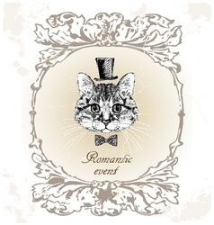 Beautiful cat card in vintage vector