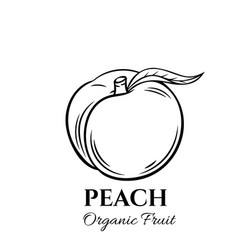 Hand drawn peach icon vector