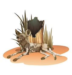 A wild dog near the stump vector