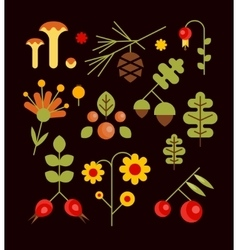 Autumn Natural Wood vector image vector image