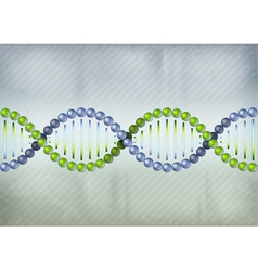 dna green blue lines vector image vector image