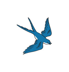 swallow flying down drawing vector image vector image