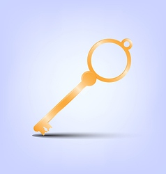 gold key vector image