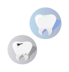 Healthy and Diseased Tooth Design Cartoon vector image