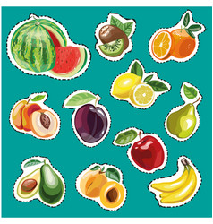 Embroidery fruits collection fashion vector