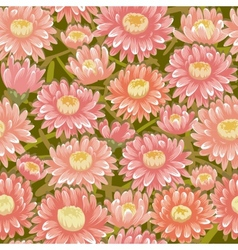 Seamless red chrysanthemum backgrounds vector