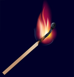 Burning match vector