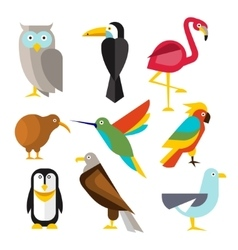 Set of wild arctic forest and tropical birds in vector