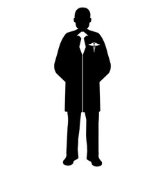 doctor flat icon service 911 silhouette vector image vector image
