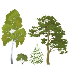 Forest plants set vector