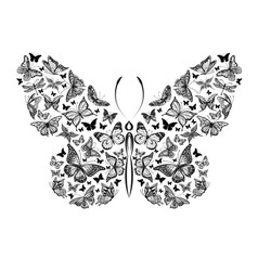 silhouette of a butterfly made of a small vector image vector image
