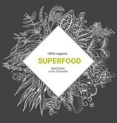 superfood rhombus banner sketch iilutstration vector image