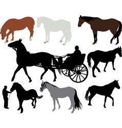 Horses vs vector image
