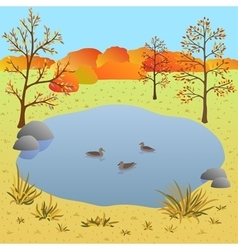 Flate autumn landscape lake with ducks vector