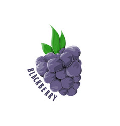 Logo icon design blackberry farm vector
