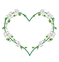 Moon orchids flowers in a heart shape vector