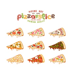 Stock of pizza slices vector