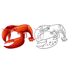 Animal outline for lobster vector