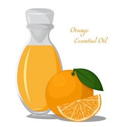 Essential oil of orange vector