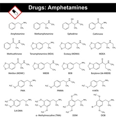 Amphetamines - natural and synthetic drugs vector