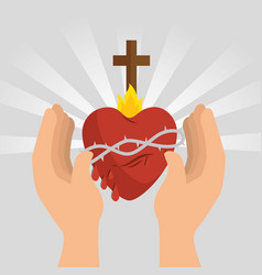 Sacred jesus heart icon vector