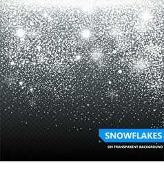 The falling snow on a transparent background vector