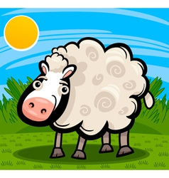 Sheep farm animal cartoon vector