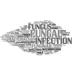 Fungal word cloud concept vector