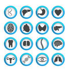 Human organs and parts icon set vector