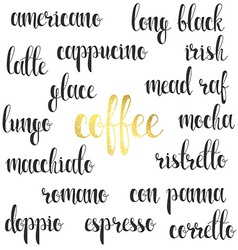 Set names of species coffee in calligraphy vector
