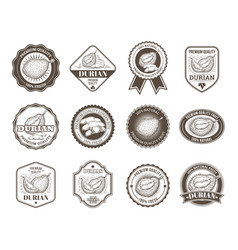 Set of black and white badges stickers vector