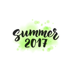 Summer 2017 text hand drawn brush lettering vector