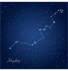 Hydra constellation vector
