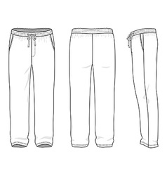 Blank mens sweatpants vector image