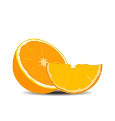 Half orange fruit on white background vector
