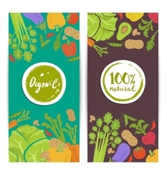 Organic food vertical flyers set vector image vector image