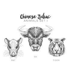 Set of hand drawn animal vector