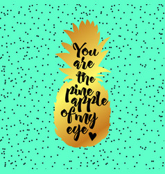 You are the pineapple of my eye poster vector