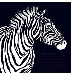 Animal white silhouette zebra vector