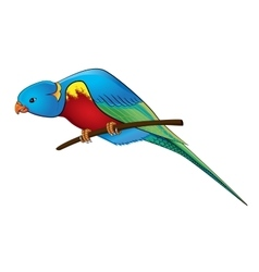 Parrot on a branch vector image vector image