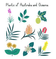 Plants of australia and oceania vector