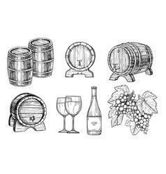 Wine making hand drawn set vector