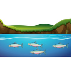 Scene with fish under the river vector