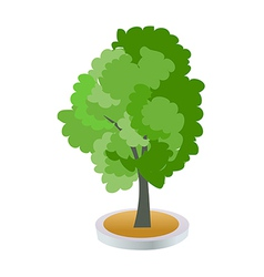 A view of a tree vector image vector image